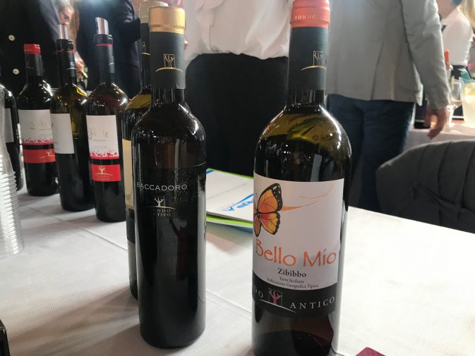Avvinando Wine Fest 2019 – Wining.it