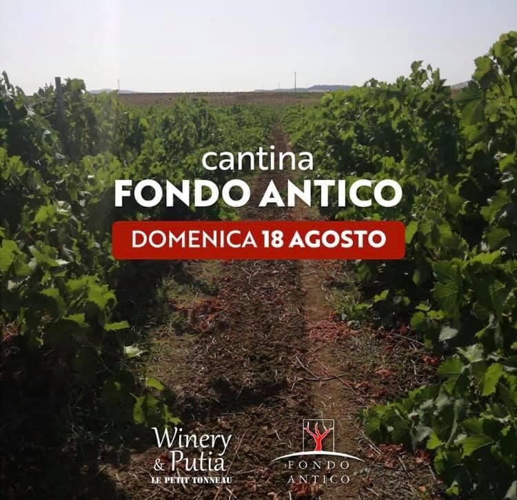 WineTasting Fondo Antico – Winery&Putia Le Petit Tonneau a Cefalù (PA)
